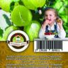"Oázis Egres - Ribes uva crispa ""Hinnomaki grün"""