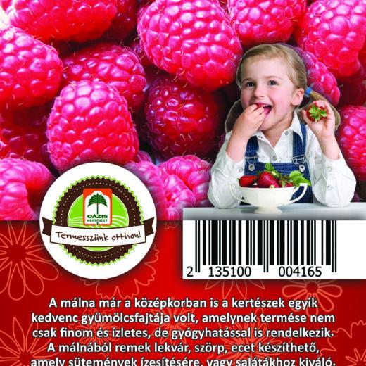 """Oázis Málna - Ribes idaeus """"Zefa Herbsternte"""""""