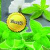 Oázis Stevia