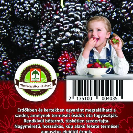 "Oázis Szeder - Rubus fruticosus ""Black Satin"""