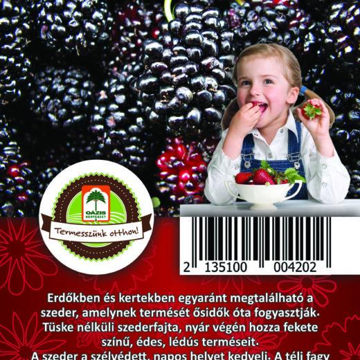 "Oázis Szeder - Rubus fruticosus ""Thornfree"""